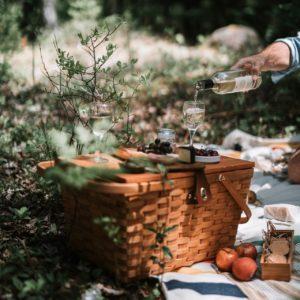 Im Wald mit Picknick-Korb, Früchten, Pilzen und einem Wein
